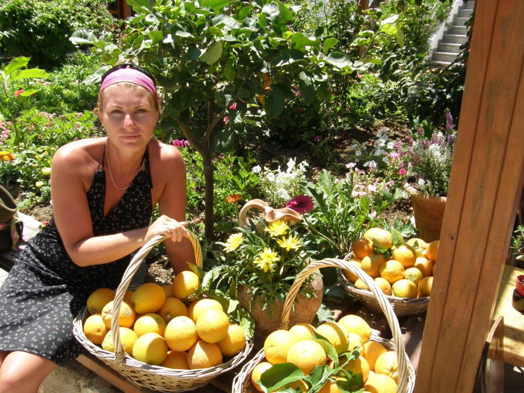 Knossos pomarańcze
