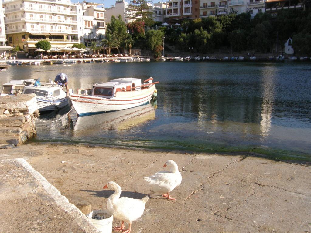 Agios Nikolaos - jezioro