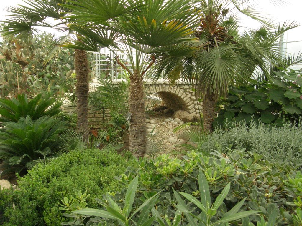 Ogród botaniczny Bałczik