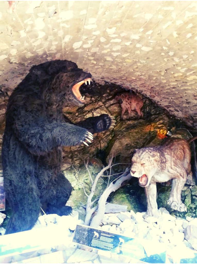 niedźwiedź jaskiniowy lew i hiena
